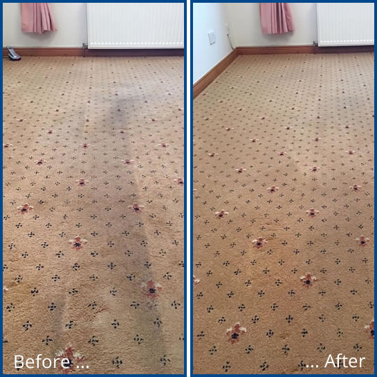 Dry carpet and upholstery cleaning
